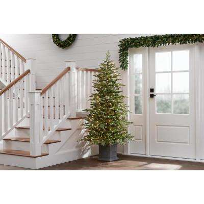 6.5 ft Winwood Grand Fir Potted Pre-Lit Artificial Christmas Tree with 300 White Lights