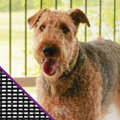 36 in. x 84 in. Charcoal Pet Resistant Window Screen