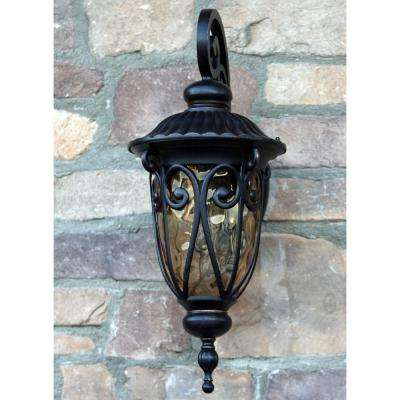 Hailee 1-Light Oil-Rubbed Bronze Outdoor Wall Mount Lantern