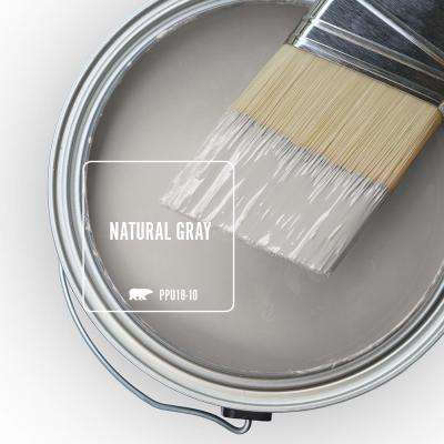 PPU18-10 Natural Gray Paint