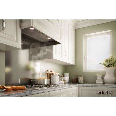 Argo 28 in. Insert Range Hood in Stainless Steel