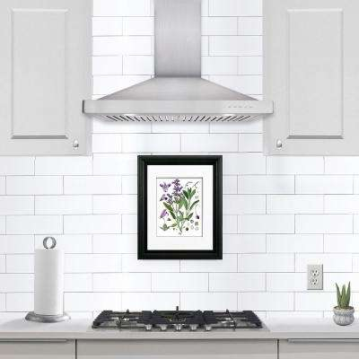 30 in. Ducted Wall Mount Range Hood in Stainless Steel with LED Lighting and Permanent Filters
