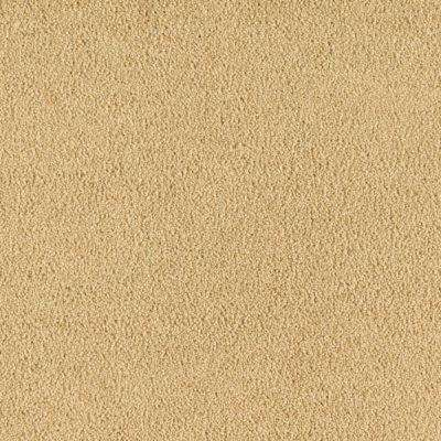 Carpet Sample - Cashmere II - Color Golden Sun Texture 8 in. x 8 in.