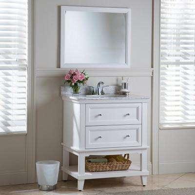 Teasian 30 in. W x 21 in. D Bathroom Vanity Cabinet Only in Cream