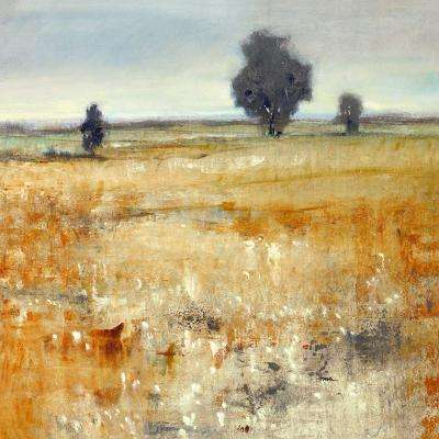 "36 in. x 36 in. ""Open Field II"" by Timothy O'Toole Gallery Wrapped Canvas Wall Art"