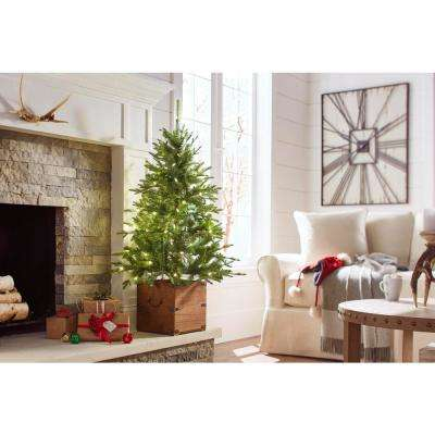 4 ft. Pre-Lit Frasier Artificial Christmas Porch Tree with Warm White Battery Operated LED Light and Wood Pot