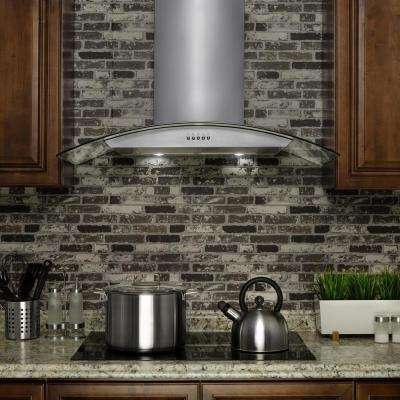 30 in. Convertible Kitchen Wall Mount Range Hood in Stainless Steel with Tempered Glass, LEDs and Carbon Filters