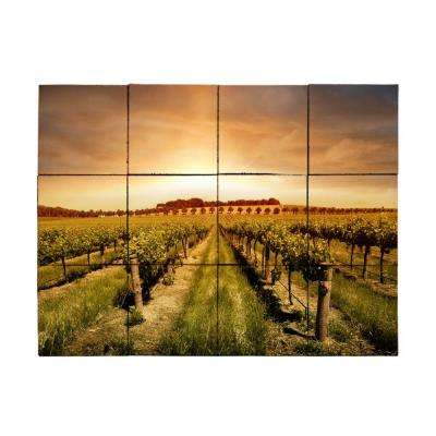 Vineyard2 18 in. x 24 in. Tumbled Marble Tiles (3 sq. ft. /case)