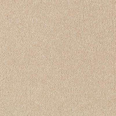 Turbo II - Color Haystack Texture 12 ft. Carpet
