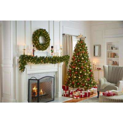 9 ft. Pre-Lit LED Artificial Wesley Long Needle Pine Christmas Garland with 170 Tips and 60 Warm White Lights