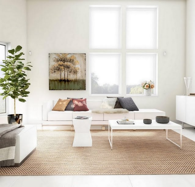 White Living Room with Earth Tones