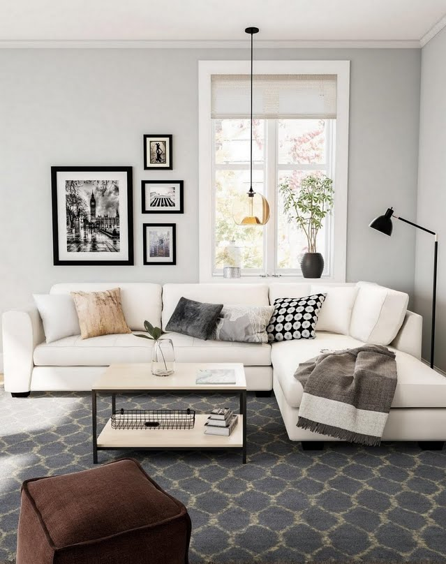Classic Gray and Beige Living Room