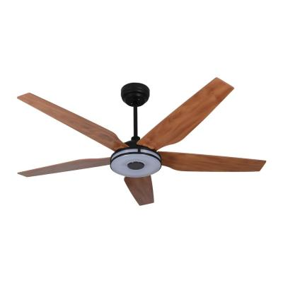 Explorer 56 in. Integrated LED Indoor Black Smart Ceiling Fan with Light Kit works with Google and Alexa