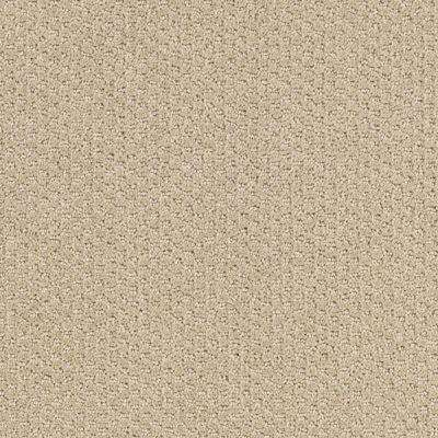 Carpet Sample - Katama II - Color Neutral Ground Pattern 8 in. x 8 in.