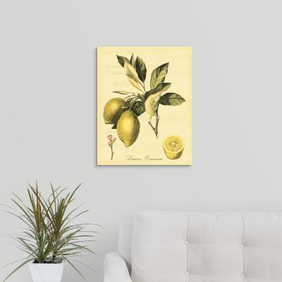 "16 in. x 20 in. ""Petite Tuscan Fruits II"" by  Vision Studio Canvas Wall Art"