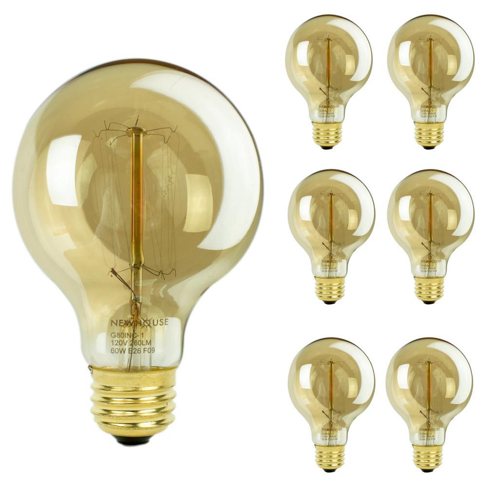 Newhouse Lighting 60 Watt Incandescent T45 Thomas Edison Vintage Filament Globe Light Bulb 6