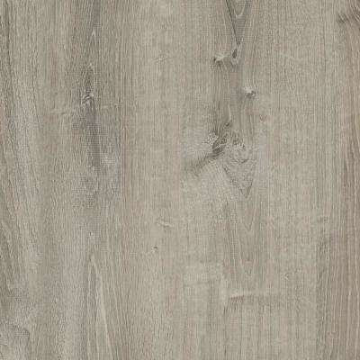 Take Home Sample - Gray Birch Wood Luxury Vinyl Flooring - 4 in. x 4 in.