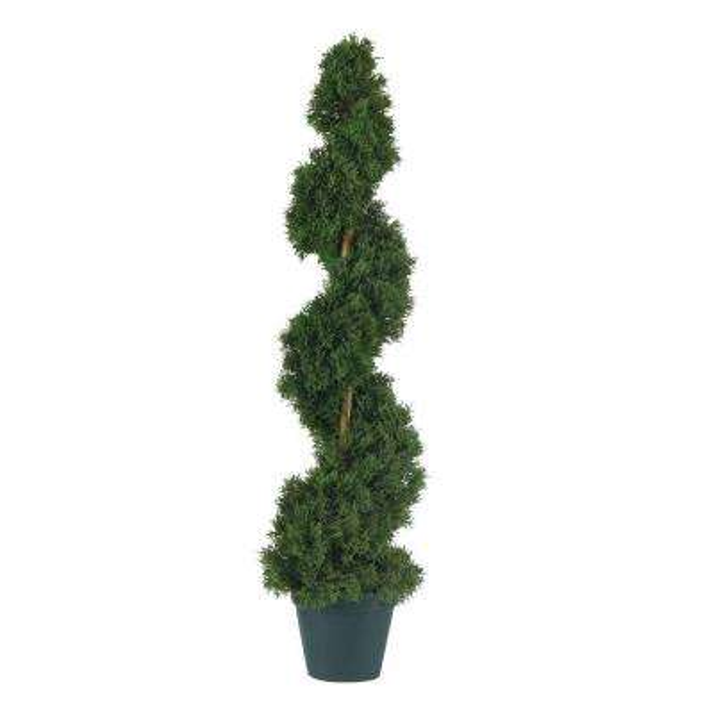 3 ft. Cedar Spiral Silk Tree
