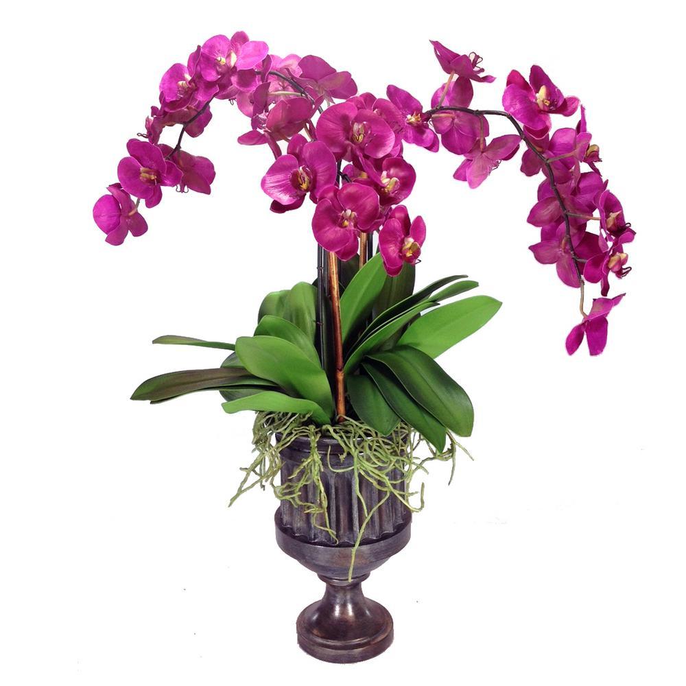 Phalaenopsis Orchids 35 in. Brown Resin Urn Flowers