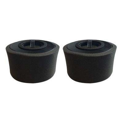 Foams and 2 Filters Replacement Eureka DCF20, Compatible with Part 79902-4 (2-Pack)