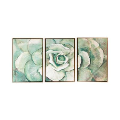 Succulent 3-Piece Floating Frame Canvas Botancial Nature Art Print 24 in. x 48 in.