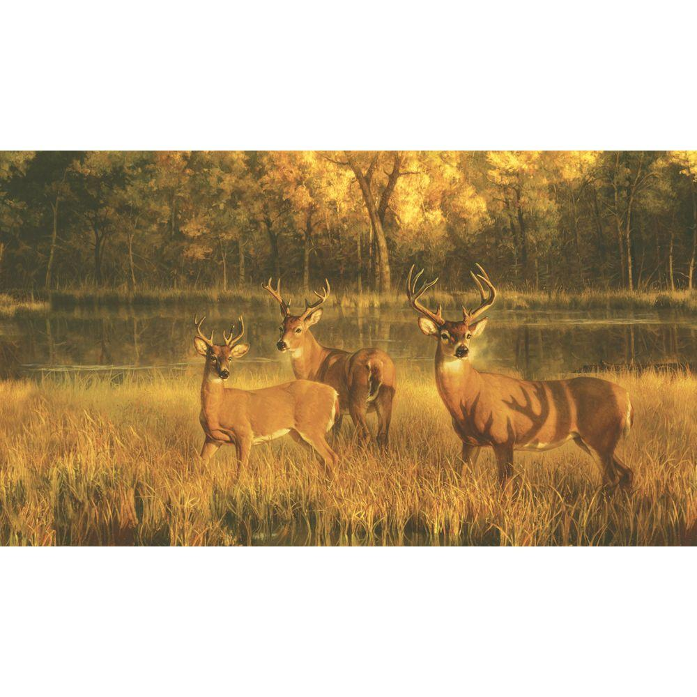 York Wallcoverings 10.5 ft. x 6 ft. White Tail Lake Chair Rail Wall Mural