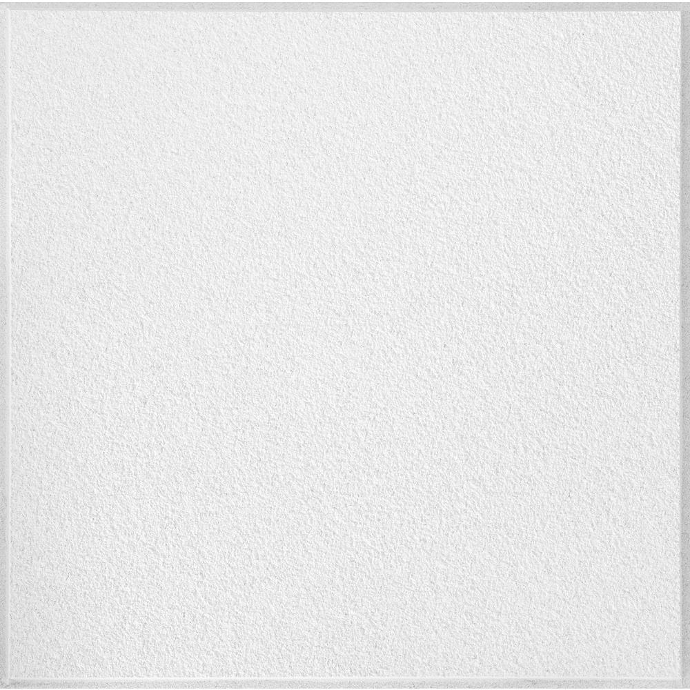 Armstrong Ceilings Classic Fine Textured Regular 24 in x 24 in. x 3 ...