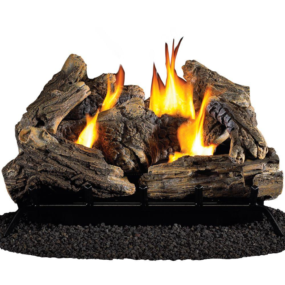 ProCom 24 in. Vent-Free Dual Fuel Gas Fireplace Logs with Remote