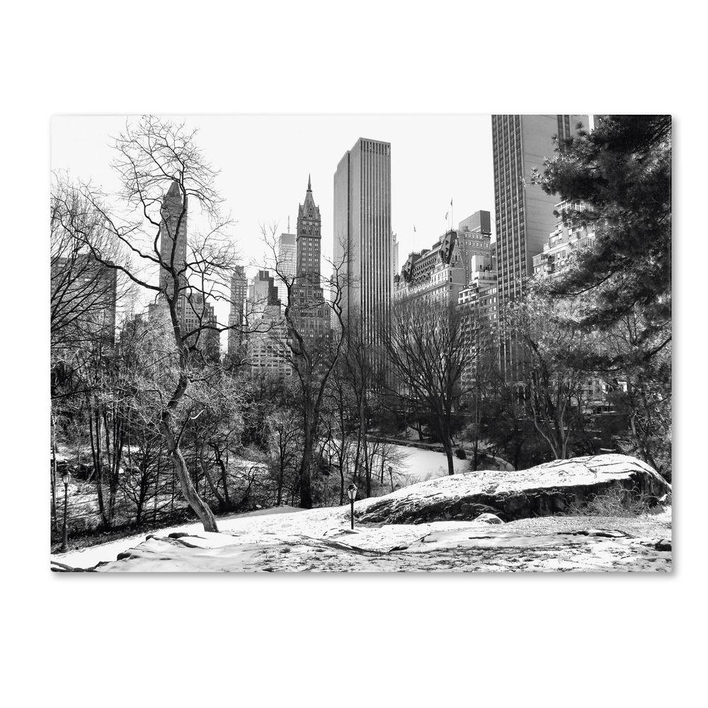 Trademark Fine Art 22 in. x 32 in. Central Park Canvas Art