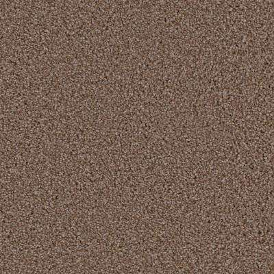 Carpet Sample - Hideaway II - Color Southern Flow Texture 8 in. x 8 in.