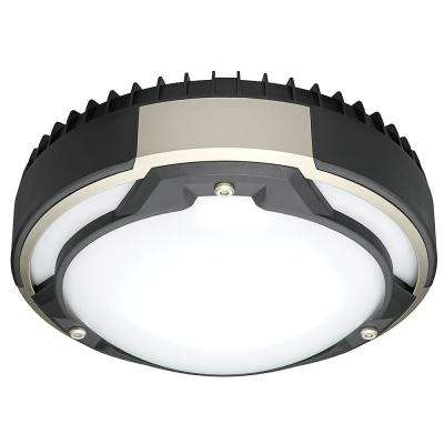 Heavy Duty 9 in. Round Black & Brushed Nickel 80 Watt Equivalent Integrated LED Flushmount with Color Changing Feature