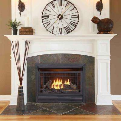Modern Gas Fireplace Inserts Fireplace Inserts The Home Depot