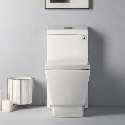 Modern 1-Piece 1.0/1.6 GPF High Efficiency Dual Flush Elongated All-in One Toilet with Soft Closed Seat Included White