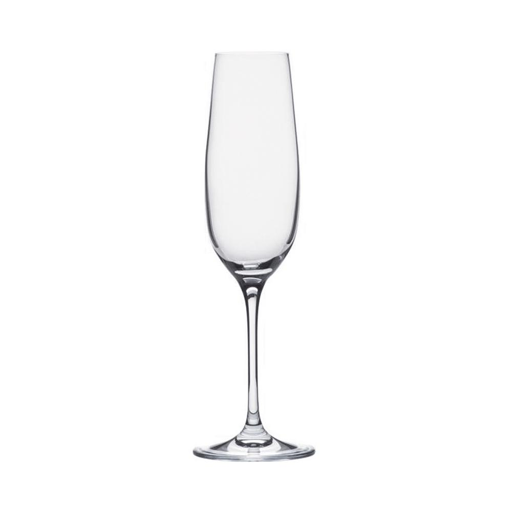Plastic BPA Free Clear Champagne Drinkware (Set of 6)