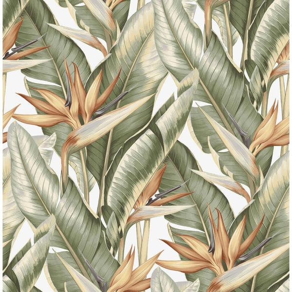 Kenneth James Arcadia Light Green Banana Leaf Wallpaper