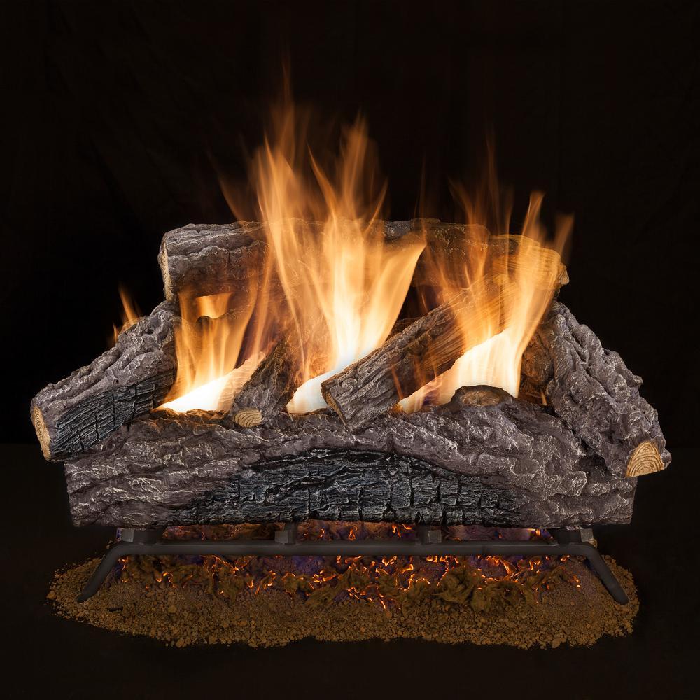 Natural Gas Fireplace Insert Faux Fake Logs Dual-Burner ...