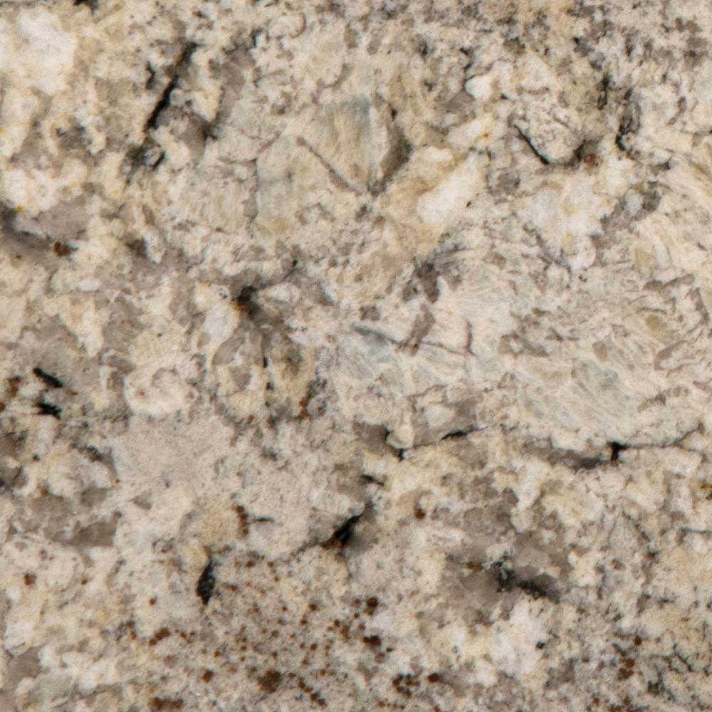 3 in. x 3 in. Granite Countertop Sample in Snowfall