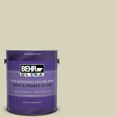 1 gal. #PPU9-17 Pale Cucumber Ceiling Flat Interior Paint and Primer in One