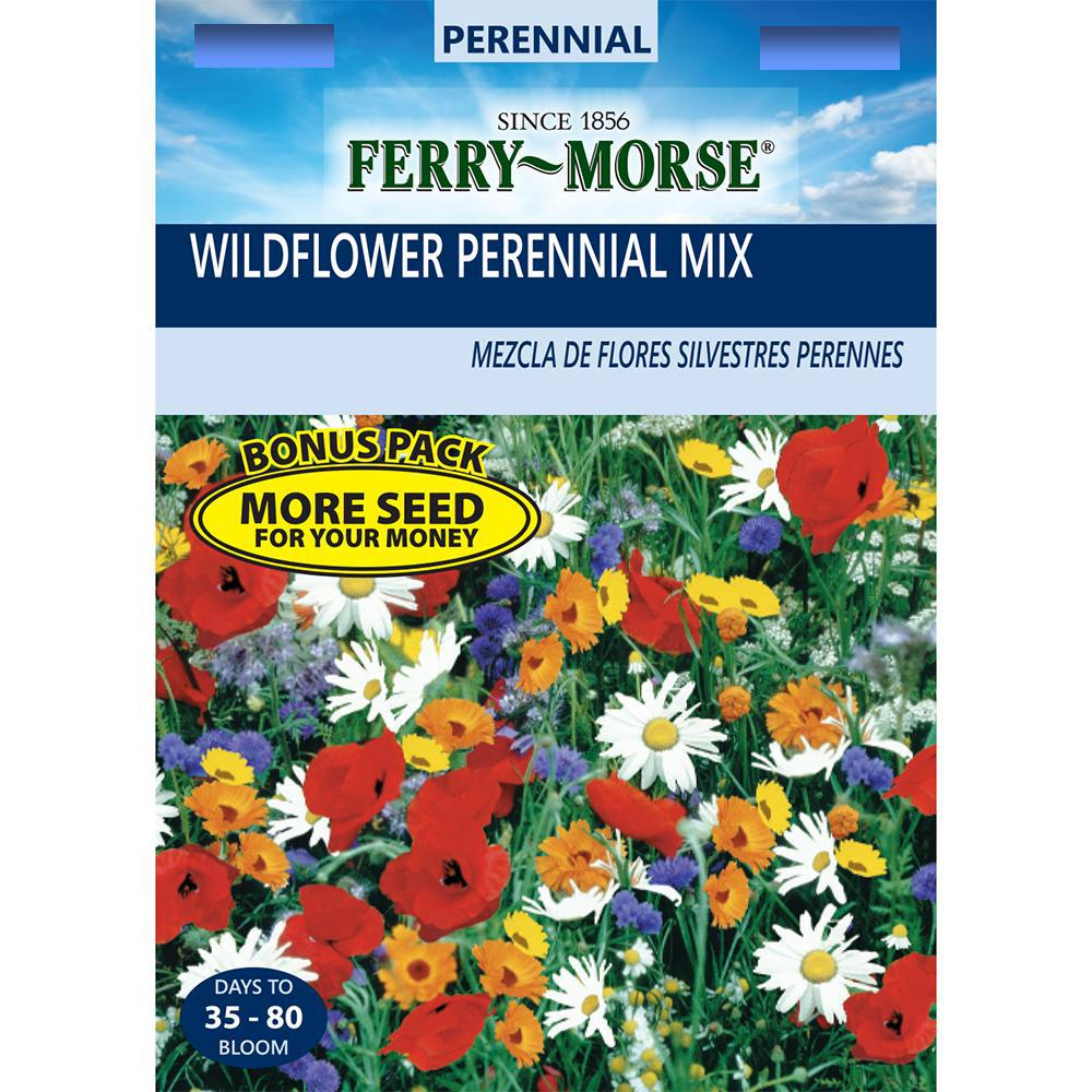 Ferry-Morse Wildflowers Sunny Meadow Mixture Seed