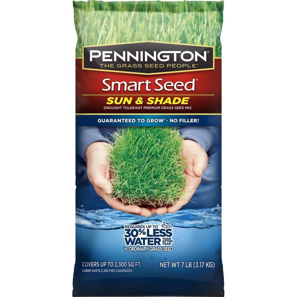 Pennington Smart Seed 7 lb. Sun and Shade Central Grass Seed