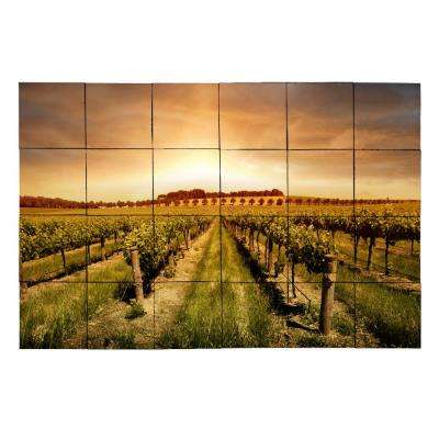 Vineyard2 36 in. x 24 in. Tumbled Marble Tiles (6 sq. ft. /case)