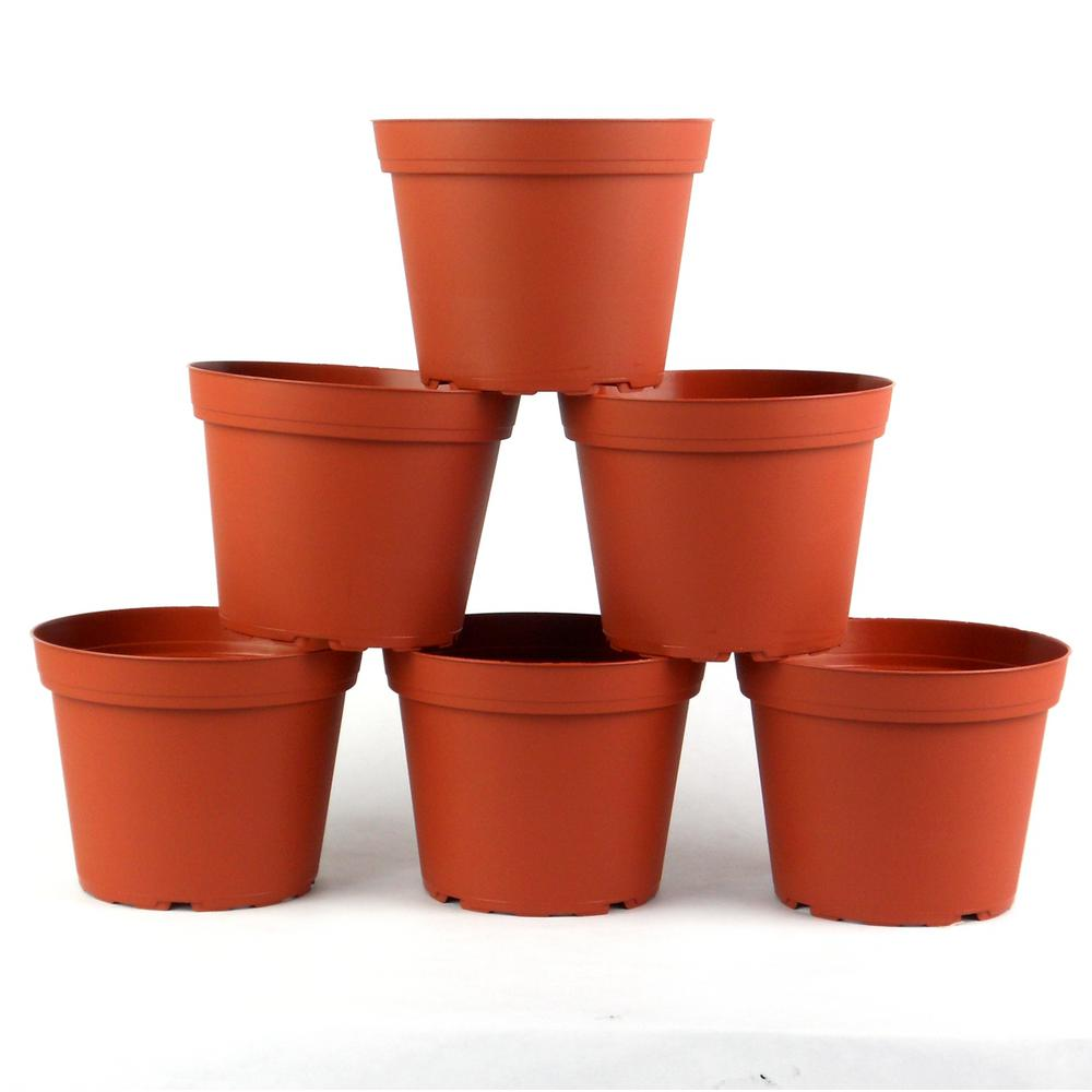 6 in. Plastic Round Pot (6-Pack), Red