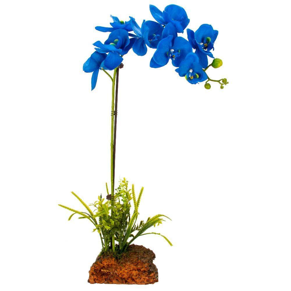 Cyma orchids everlasting orchid arrangement vinbao the home depot izmirmasajfo