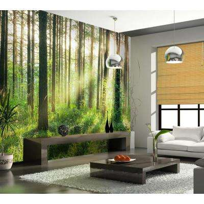 144 in. W x 100 in. H Sunset in the Woods Wall Mural