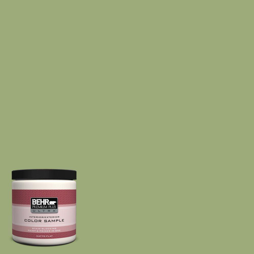 8 oz. #BIC-12 Siamese Green Interior/Exterior Paint Sample