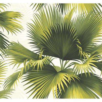 Endless Summer Green Palm Wallpaper