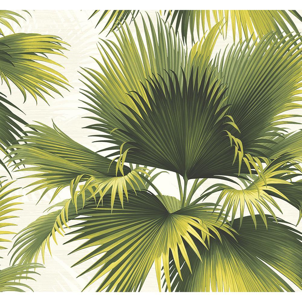 Endless Summer Green Palm Wallpaper Sample