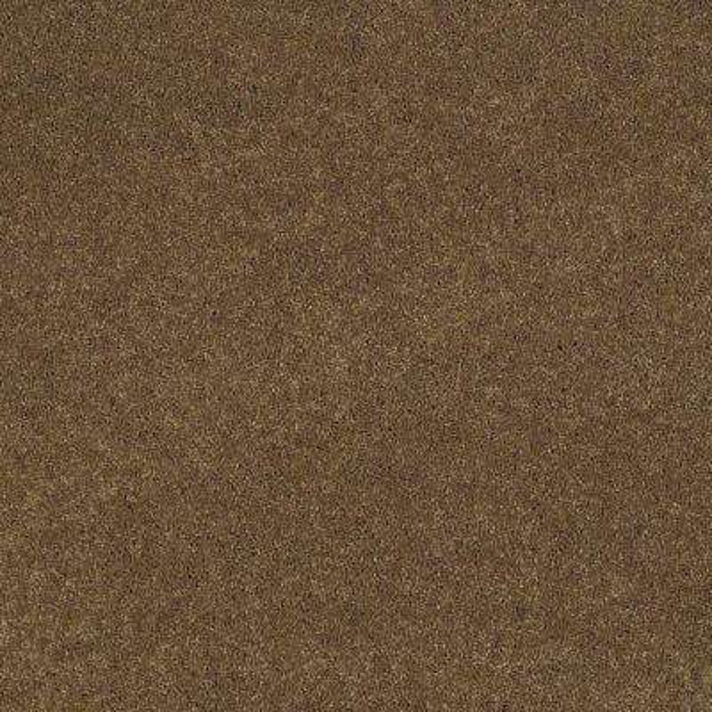 Carpet Sample - Tremendous II - Color Haystack Texture 8 in. x 8 in.