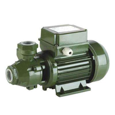 0.75 HP Peripheral Pumps