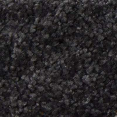 Carpet Sample - Gemstone I - Color Masterpiece Texture 8 in. x 8 in.